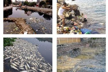 Khủng hoảng môi trường và những hậu quả